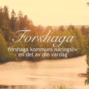 Det bubblar i Forshaga